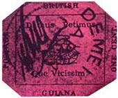 guyana magenta